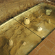 Antiquities Glass Floor